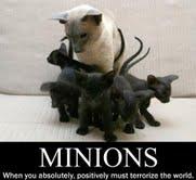 Wish I had minions